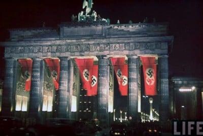 Nazi Flag (12)