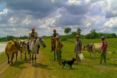 Agrarian Revolution: 54 years of progress