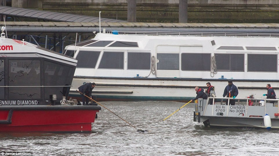 Injured pedestrian rescued from Thames River